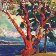 emily-carr-arbustus-tree