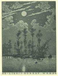 konstantin-kalynovych-moonlight