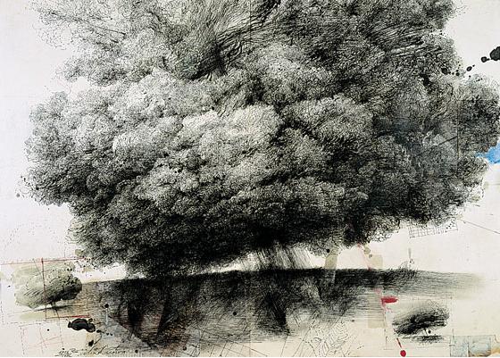 safet-zec-china-1992