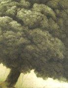 veliko-ukrivljeno-drevo-large-curved-tree-2001