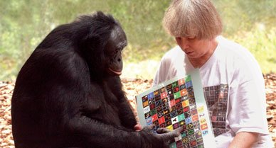 speakingbonobo388.jpg__800x600_q85_crop.jpg