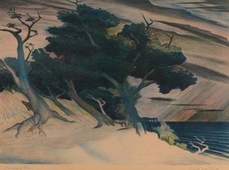 BUELL WHITEHEAD LITHOGRAPH 'SUMMER RAIN'