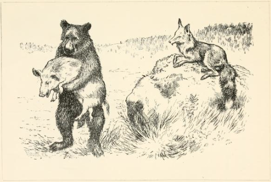 Erik Werenskiold - conte The Bear and the Fox - What nice thing have you got there ? asked the fox. Pork, said the bear