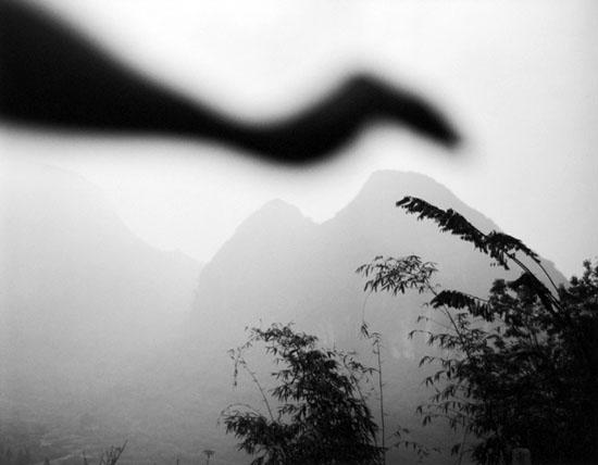 Arno Rafael Minkkinen - Bird of Lianzhou, Lianzhou, China, 2006.jpg