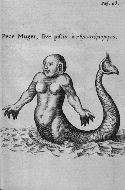 Pece Muger, sive piscis (andropomorphus) - Redi Francesco (1626-1697) - Experimenta círca res diversas naturales, speciatim illas, Quae ex Indiis adseruntur