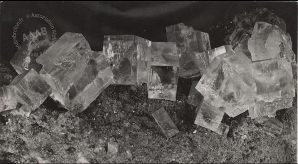 Tirage photographique de Brassaï daté aux environs de 1934, utilisé par André Breton pour illustrer L'Amour fou en 1937.png